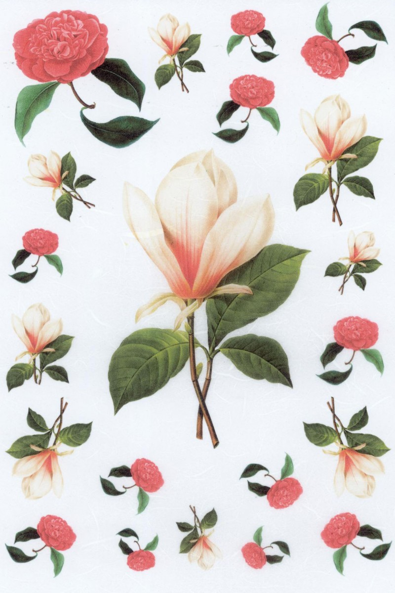 Rice Paper For Decoupage L Magnolia Amp Red Roses Rice Paper