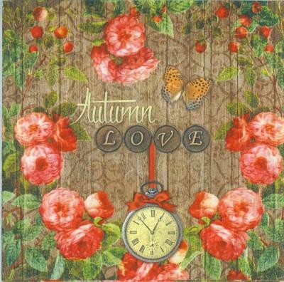 Decoupage Paper of  Autumn Love Napkins