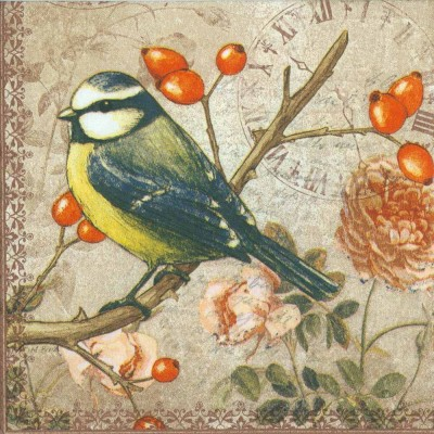 Decoupage Paper of  Bird on a Branch Napkins