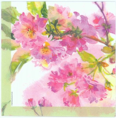 Decoupage Napkins of Water Color of Spring Cherry Blossoms