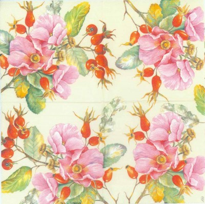 Decoupage Paper Napkins of Wild Roses
