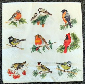 Decoupage Paper Art Napkin - Bird Collection