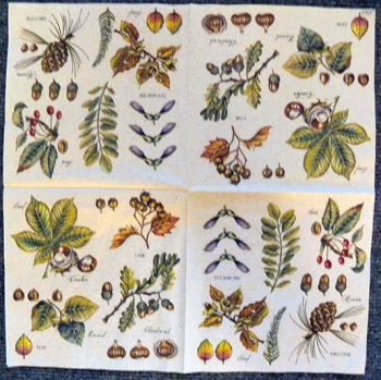 Decoupage Paper Art Napkin | Vintage Tree Leaves and Nuts