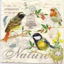 Decoupage Paper Art Napkin | Birds of Spring