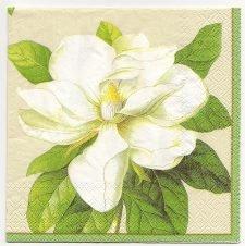 Decoupage Paper Art Napkin | Glorious Magnolias