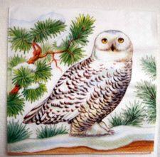Decoupage Paper Art Napkin - Snowy Owl