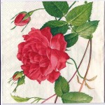 Decoupage Paper Art Napkin | Chinese Rose
