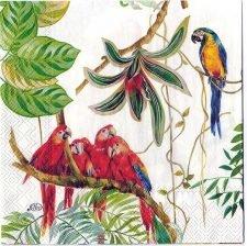 Decoupage Paper Art Napkin | Orchids and Parrots