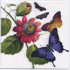 Decoupage Paper Art Napkin | 4 Butterflies and a Flower