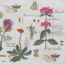 Decoupage Paper Napkins  Flower Garden and Butterflies  Botanical Napkins   Paper Napkins for Decoupage