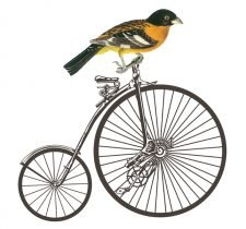Decoupage Instant Download | Vintage Bike with Bird
