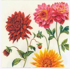 Decoupage Paper Napkins Red Pink Yellow Dahlias