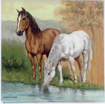 Event Paper Napkins Pair of Horses