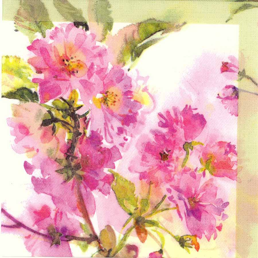 Decoupage paper napkins of watercolor of spring cherry blossoms mightylinksfo