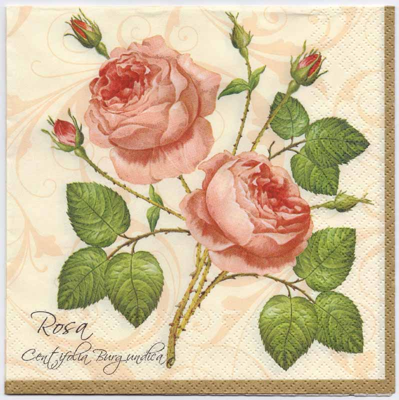 Decoupage Paper Napkins of Botanical Print of 2 Pink Roses on cream