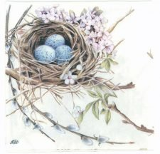 Decoupage Paper Napkins | Robin Bird Nest with Eggs | Summer Napkins | Lunch Napkins | Party Napkins | Paper Napkins for Decoupage