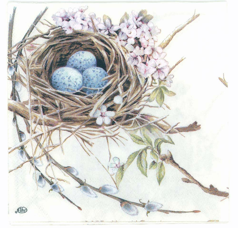 Decoupage Paper Napkins Of Robin Bird Nest With Eggs