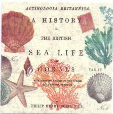 Decoupage Paper Napkins | Vintage Sea Life and Coral | Paper Napkins for Decoupage