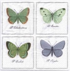 Decoupage Paper Art Napkin | Vintage Print of Four Butterflies | Lunch Napkin  | Paper Napkins for Decoupage