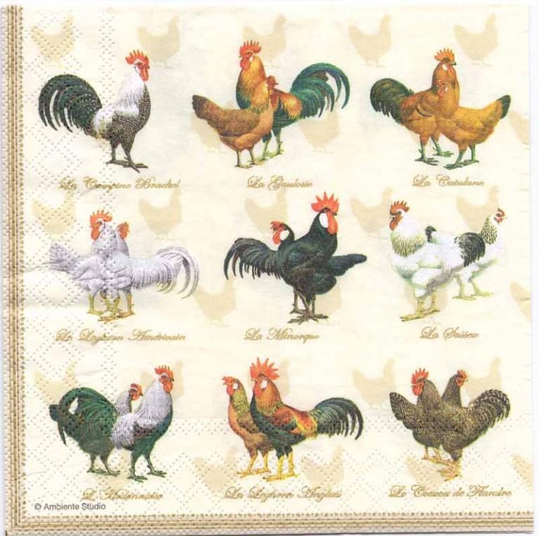 (Аристарх Венес) рисовая бумага и курица основном, жители СНГ