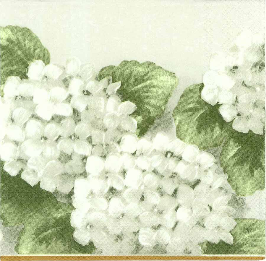Decoupage Paper Napkins Of White Hydrangeas