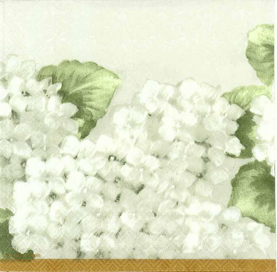 Decoupage Paper Napkins Of White Hydrangeas