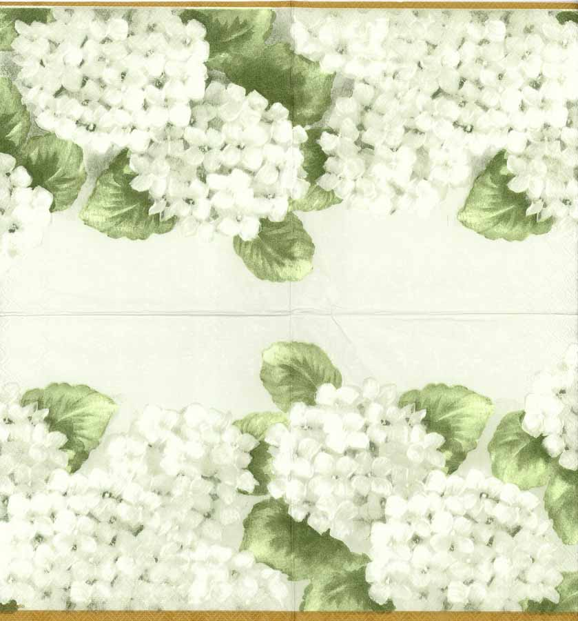 Decoupage paper napkins of white hydrangeas mightylinksfo
