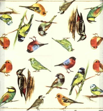 Decoupage Napkins | Birds of a Feather|Bird Napkins|Spring Napkins 3