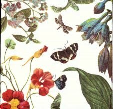 Designer Paper Napkins | Spring Flower Garden & Butterflies Dragonflies | Paper Napkins for Decoupage 1