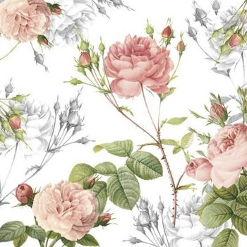 vintage pink roses