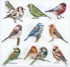 Decoupage Paper of Bird Collection | Paper Napkins for Decoupage