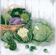 Decoupage Paper of Garden Harvest Cabbage Brussels Sprouts | Paper Napkins for Decoupage