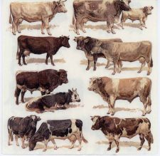 Decoupage Paper of Cattle Breeds Bulls and Cows | Paper Napkins for Decoupage