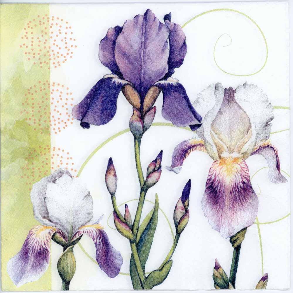 Decoupage Napkins Of Watercolor Of Iris Flowers Chiarotino