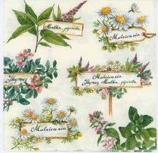 Decoupage Paper Napkins of Herb Garden Thyme Chamomile Mayweed | Paper Napkins for Decoupage