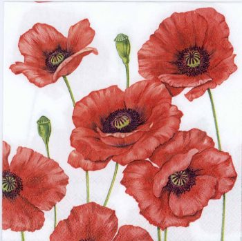 Decoupage Paper Napkins of a Field of Red Poppies | Paper Napkins for Decoupage