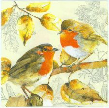 Pair of Red Robins | Bird Napkins | Robin Napkins | Paper Napkins for Decoupage
