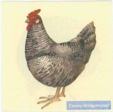 Farm Yard Hens |Chicken Napkins | Paper Napkins for Decoupage