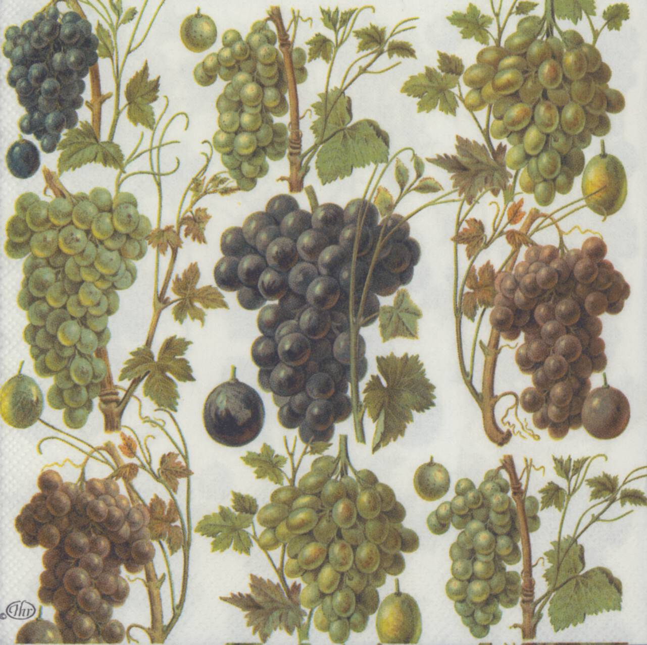 Decoupage paper napkins of wine grape harvest for Buy grape vines for crafts